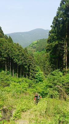 109井原山