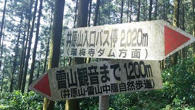 116井原山