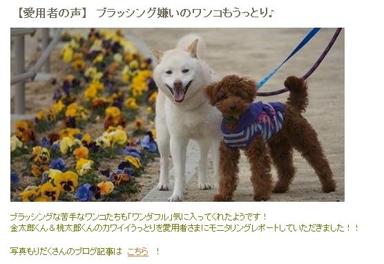 Baidu IME_2014-11-10_11-2-19