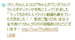 ho_org.jpeg