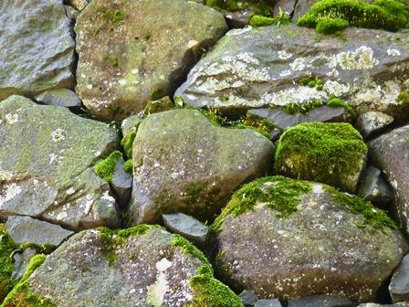 石垣のハート