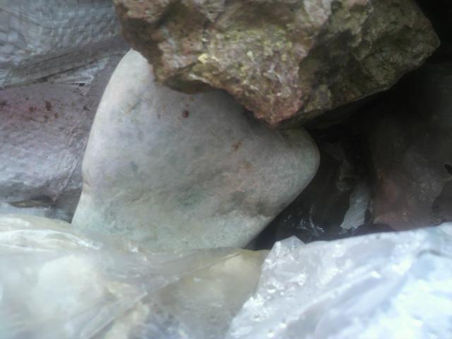 庭石 (2)