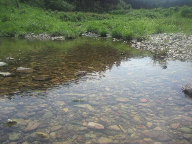 川 (1)