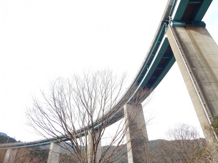 DSCN8884人吉ループ橋