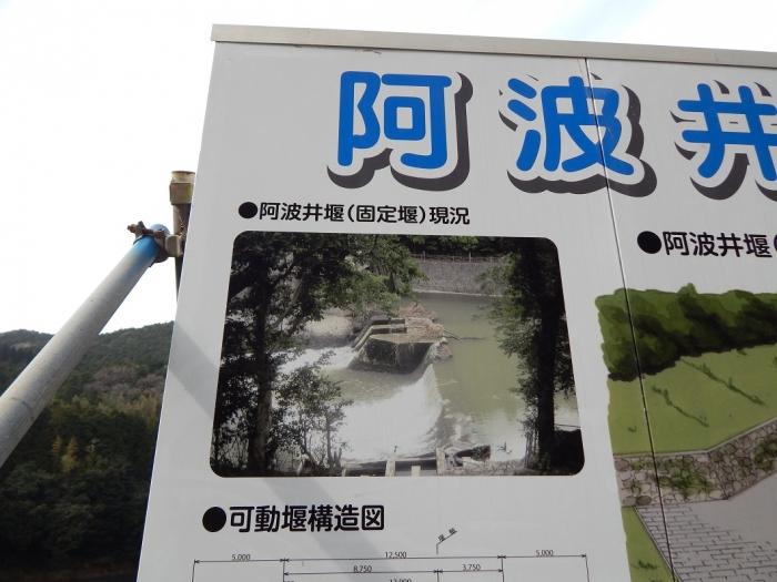 DSCN8895チッソ 阿波井堰