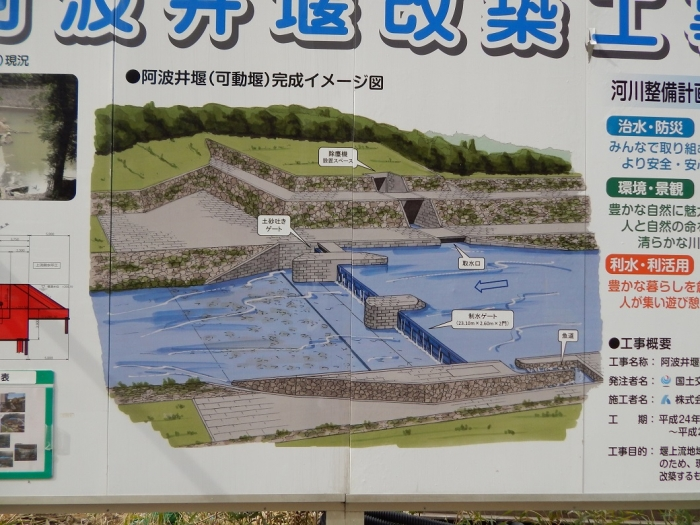 DSCN8897チッソ 阿波井堰