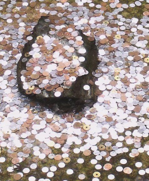画像ー269 2014京都 035-4