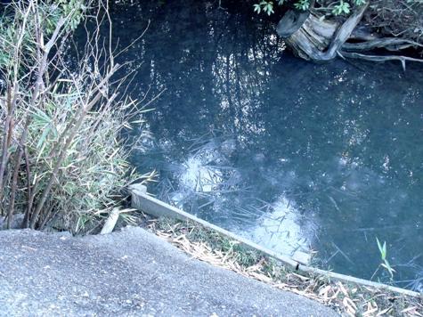 画像ー271神戸震災と1月29日の朝・家の周辺 030-2