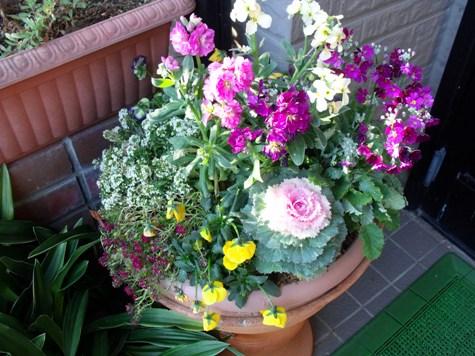 画像ー271神戸震災と1月29日の朝・家の周辺 047-2