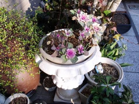 画像ー271神戸震災と1月29日の朝・家の周辺 052-2