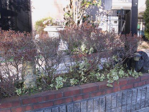 画像ー271神戸震災と1月29日の朝・家の周辺 065-2