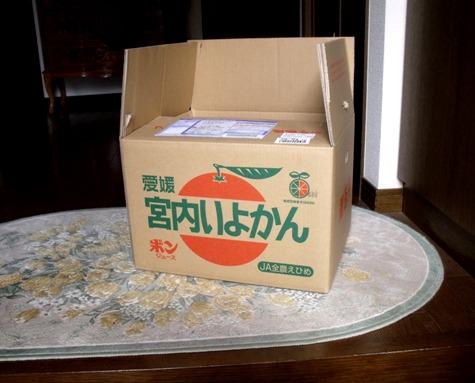 画像ー275 伊予柑 001-2