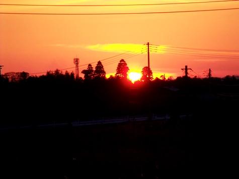 画像ー277 つくしと落日 022-2