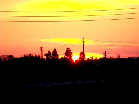 画像ー277 つくしと落日 024-2
