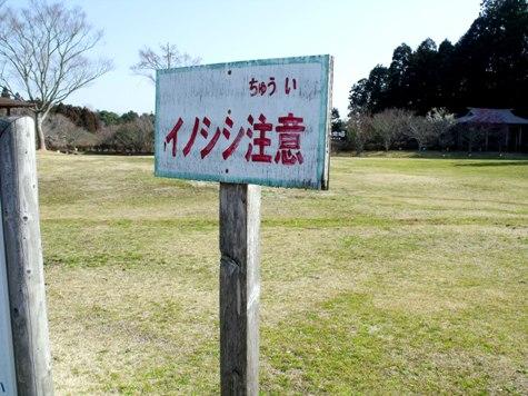 画像ー277 県民の森 069-2