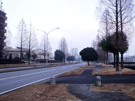 画像ー281 昭和の杜 139-2
