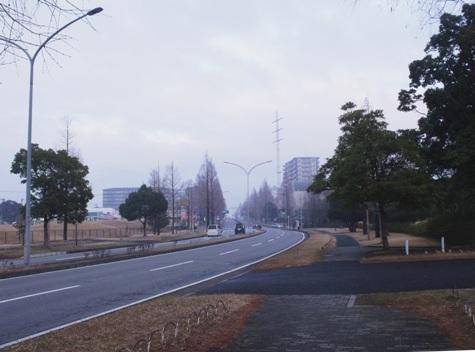 画像ー281 昭和の杜 142-2