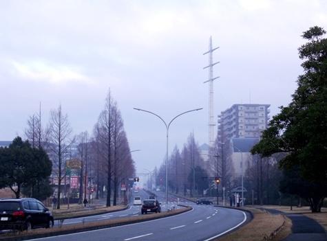 画像ー281 昭和の杜 143-2
