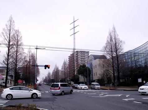 画像ー281 昭和の杜 050-2