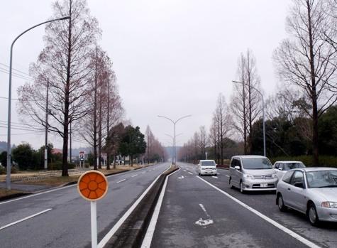 画像ー281 昭和の杜 064-2