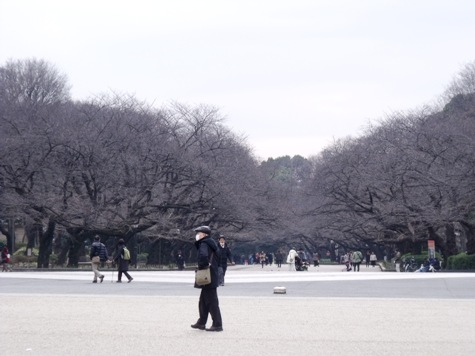 画像ー284 武藤豊先生・書道展2015年3月 004-2