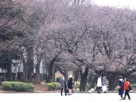 画像ー284 武藤豊先生・書道展2015年3月 006-2