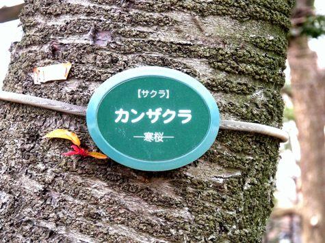 画像ー284 武藤豊先生・書道展2015年3月 008-2