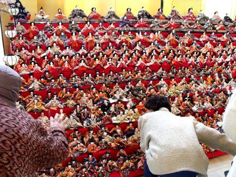 画像ー282 サンライズ九十九里の雛人形としらこ桜 024-2