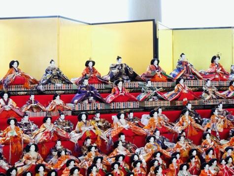 画像ー282 サンライズ九十九里の雛人形としらこ桜 028-2