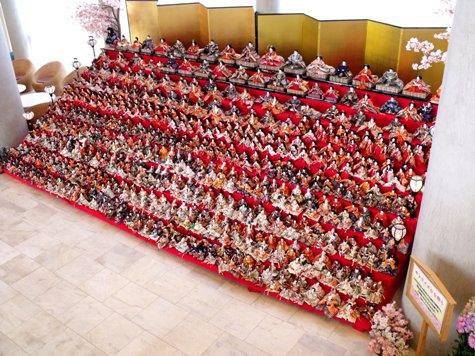 画像ー282 サンライズ九十九里の雛人形としらこ桜 047-2