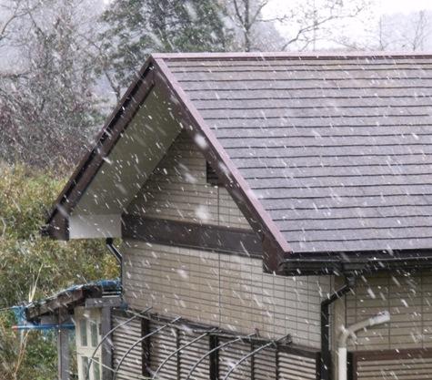 画像ー295 2015年度の初雪と地震 013-2
