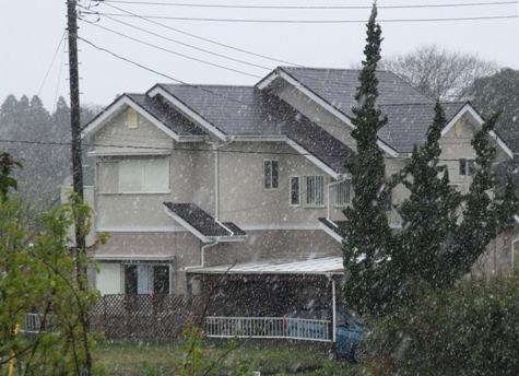 画像ー295 2015年度の初雪と地震 020-2