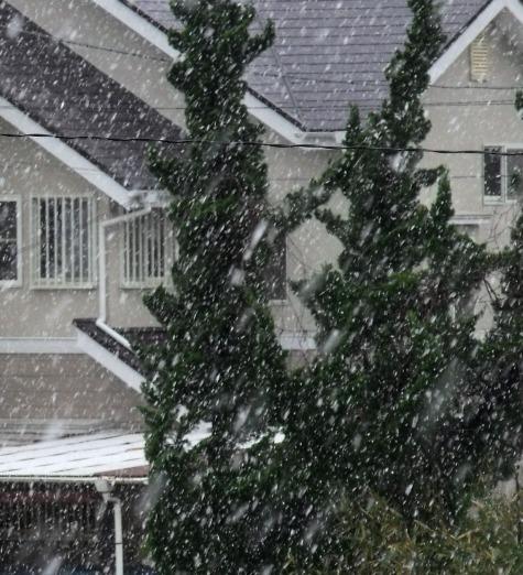画像ー295 2015年度の初雪と地震 020-5