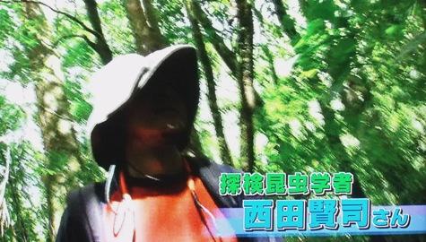 画像ー297 面白昆虫と山岳地帯料理 006-2