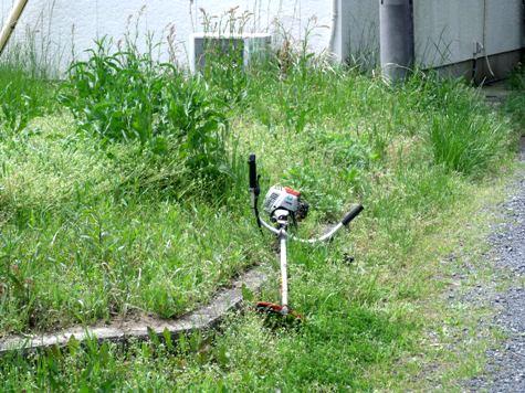画像ー299 納豆と草刈り機 086-2