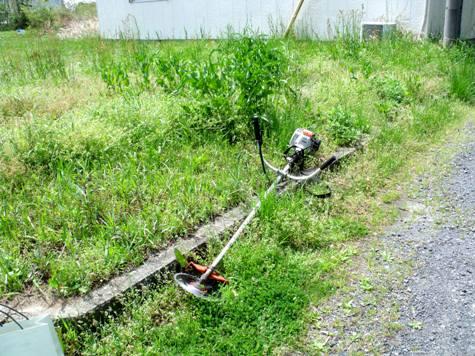 画像ー299 納豆と草刈り機 083-2