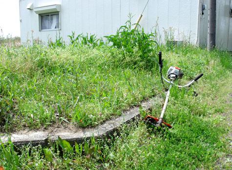 画像ー299 納豆と草刈り機 089-2