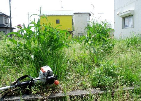 画像ー299 納豆と草刈り機 090-2