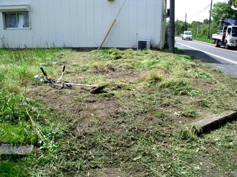 画像ー299 納豆と草刈り機 095-2