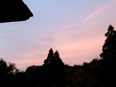 20150519 玉ねぎと夕焼け 005-2