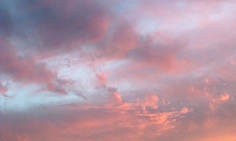 20150519 玉ねぎと夕焼け 023-2