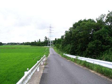 20150608 散歩 028-2