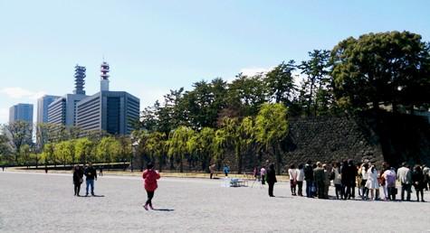 DSC_0574-2.jpg