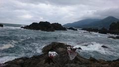2015.5.17 滝ノ間地磯