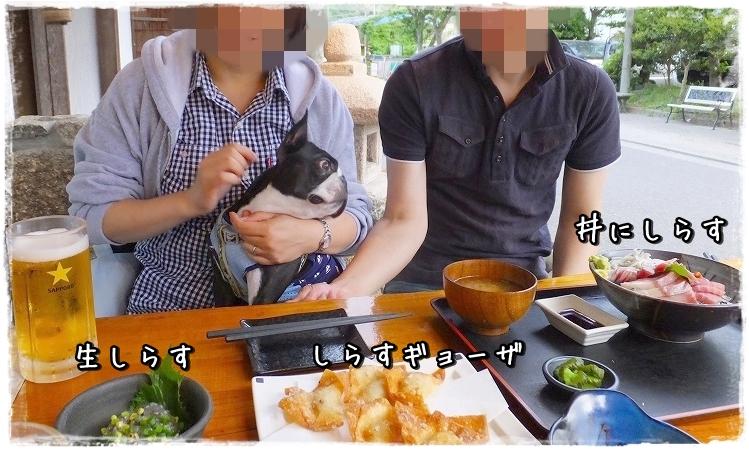 S0132222-crop.jpg