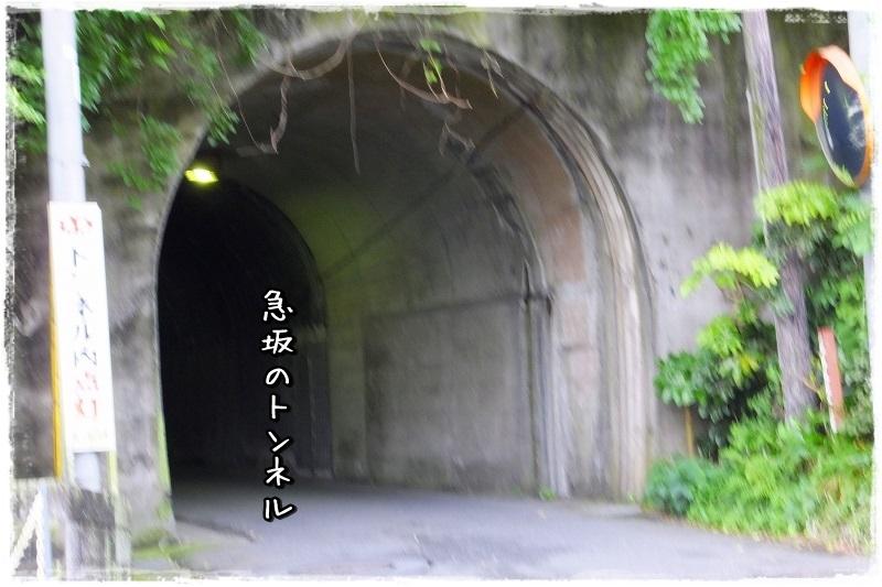 S0232889.jpg