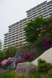 神戸市営住宅・ベルデ名谷 彩られるエントランス