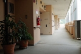 神戸市営住宅・ベルデ名谷 今は亡き人から受け継いで育てている