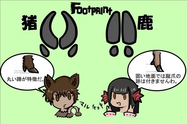 chokichokidesssuwa