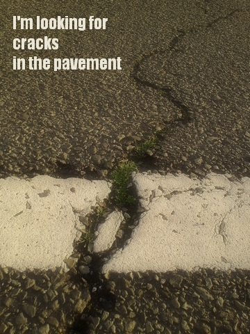 cracks in the pavement3